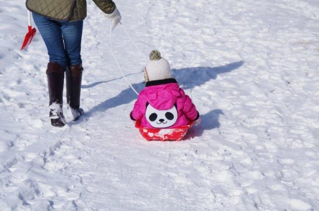 北海道にきてびっくり①:子どもがソリで引っ張られてる